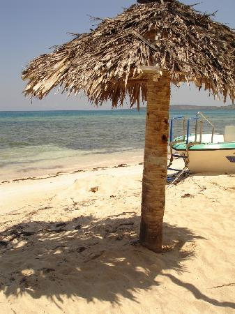 Paradise Island & The Mangroves (Cayo Arena): leaving the land