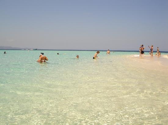 Paradise Island & The Mangroves (Cayo Arena): the beach