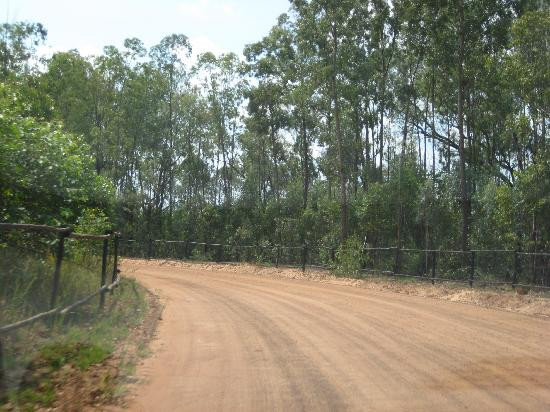 The dirt road, long and winding - Picture of Modimolle ...