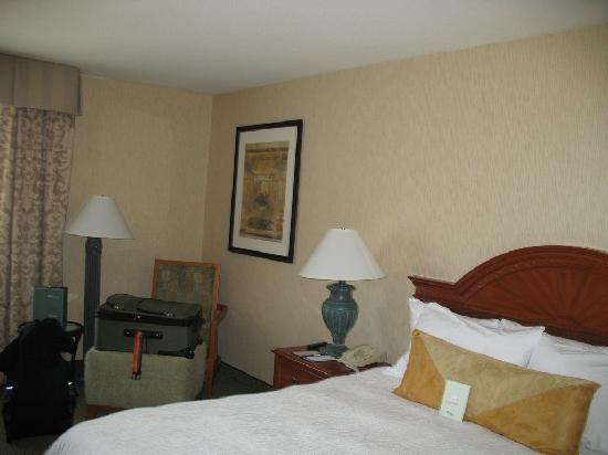 Hilton Garden Inn San Jose/Milpitas: Room