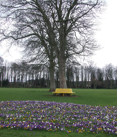 Rozelle Park