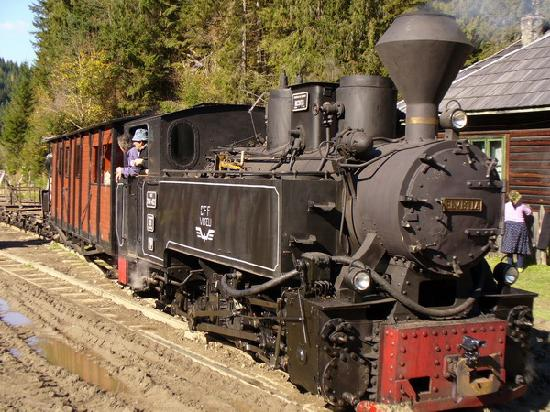 Maramures County, Rumania: The Vaser valley steam engine