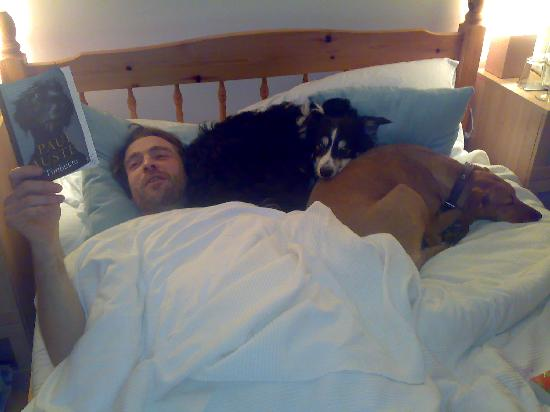 Mawgan Porth, UK: The bed was big enough to let a human in too