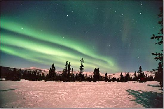 Chena Hot Springs Resort: northern lights 3