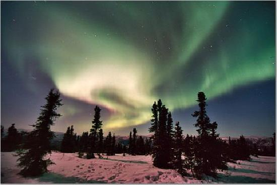 Chena Hot Springs Resort: northern lights 4