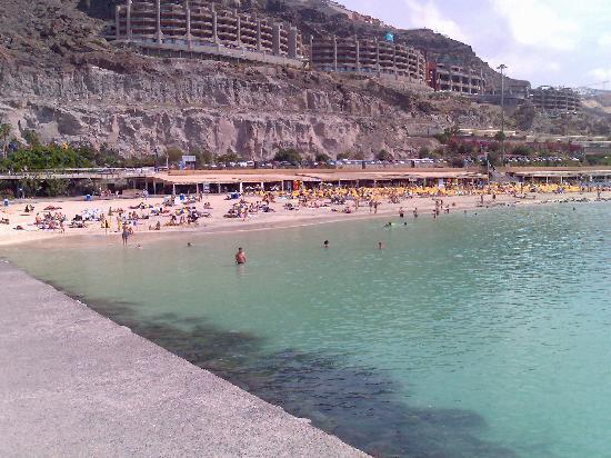 Carlota Apartments : Amodores Beach