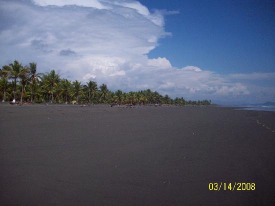 Hotel La Tranquilidad: Beach Front