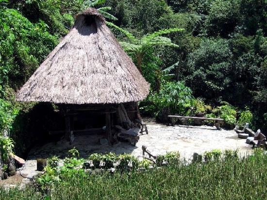 Banaue Risterrasser: a traditional house