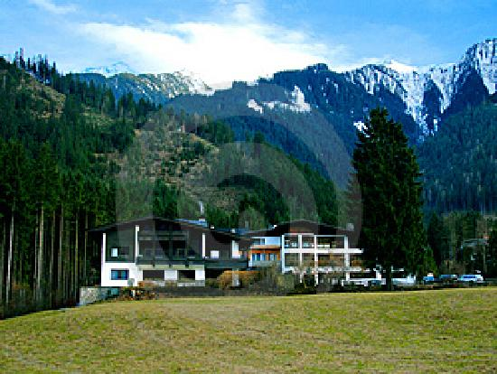 Hotel Waldheim: View near the hotel