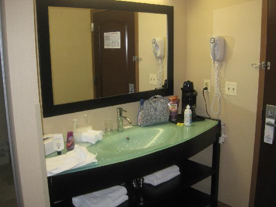 Holiday Inn Express Rochester - Greece: The huge modern sink area