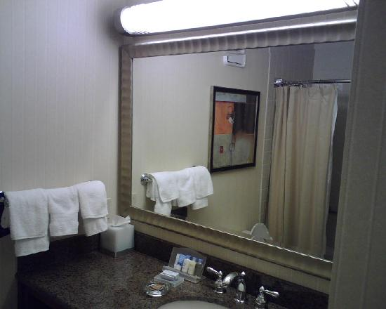 Doubletree by Hilton Minneapolis - Park Place: Bathroom