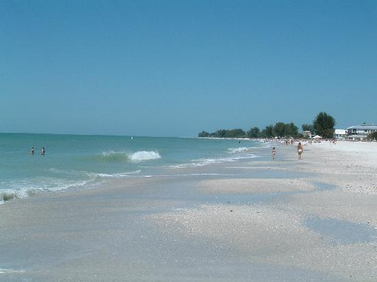 Looking Across To Longboat Key Picture Of Anna Maria