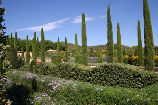 Chateau Val-Joanis: Garden