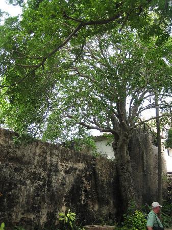 Museo Historico de Cartagena de Indias : Where the hatchet was