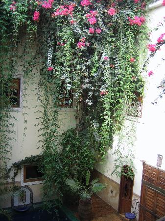 Riad Dar El Aila : une vue du patio