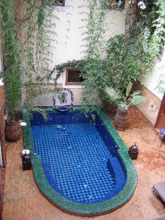 Riad Dar El Aila : piscine (bassin)
