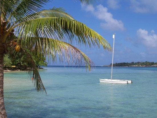 Vanuatu: Erakor Island September 2007