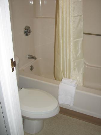 Rodeway Inn: The rest of the bathroom is small