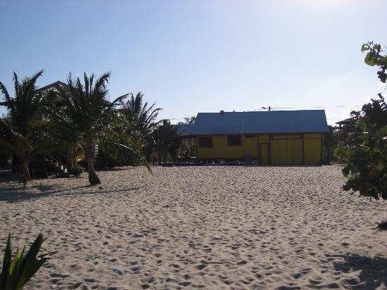 Toucan Lulu Beach Units: View of Tucan Lulu 1 from the Beach