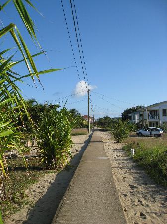 Toucan Lulu Beach Units: Main Street Placencia