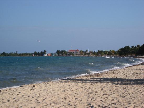 Toucan Lulu Beach Units: Placencia Beach