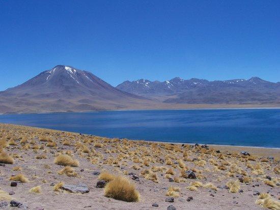 San Pedro de Atacama, Cile: Lake Miscanti