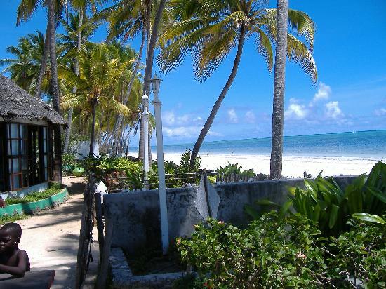 Palm Beach Inn View