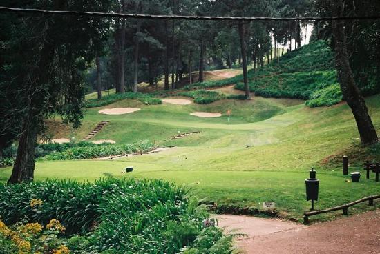 Golden Residence: golf - fabulous but not cheap