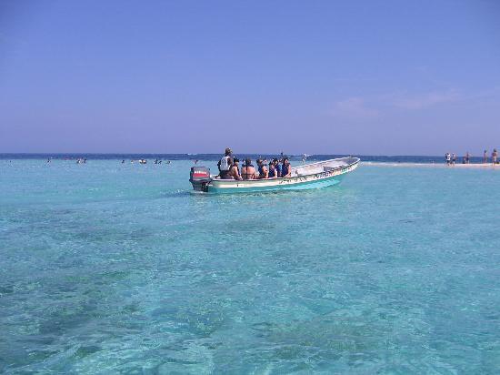 Paradise Island & The Mangroves (Cayo Arena): Paradise Island 3