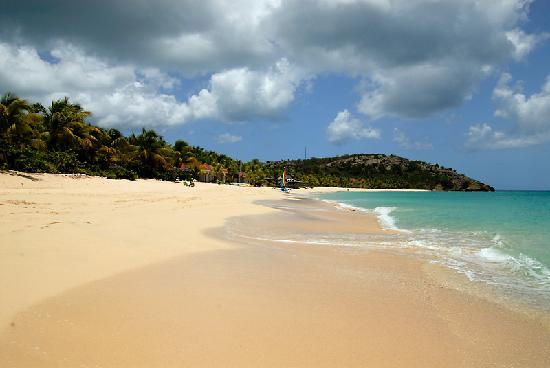 Galley Bay Resort: The beach at Galley Bay