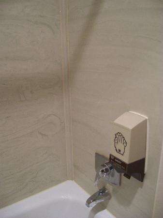 Swift Current Thriftlodge: These dispensers in the shower and near the sink!