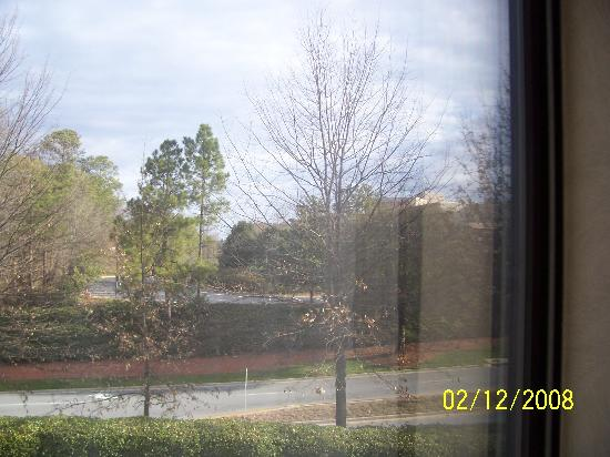 Homewood Suites by Hilton Atlanta-Peachtree Corners/Norcross: view from room