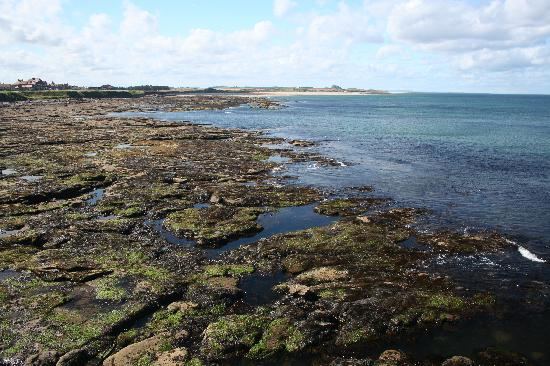 Seahouses, UK: more views