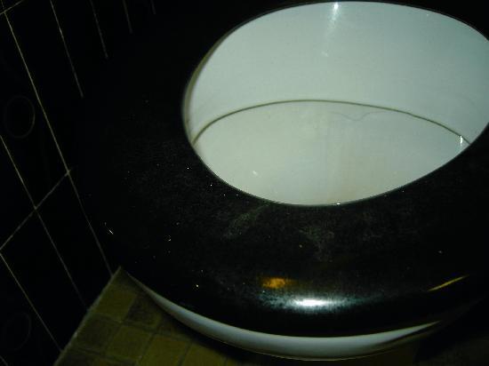 Median Lyon Hotel : strange stuff on toilet lid