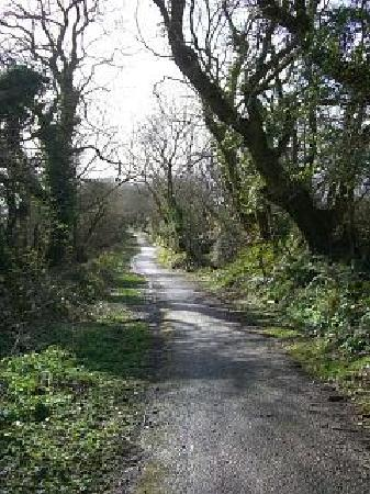 Pen Mar Guest House: path from Pen Maur into Tenby