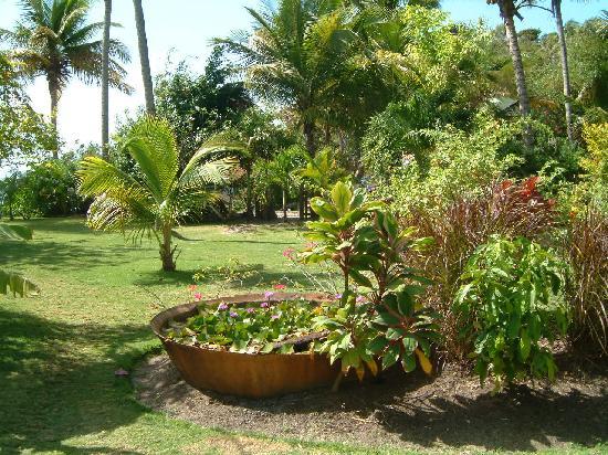 Saint David Parish, Grenada: view from cottage in gardens