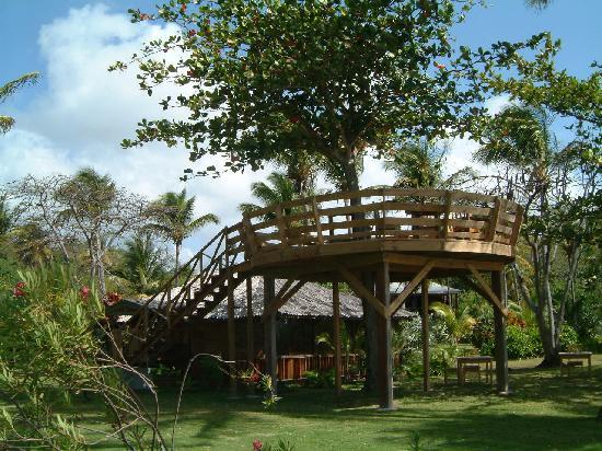 Saint David Parish, Grenada: de Almond tree restaurant