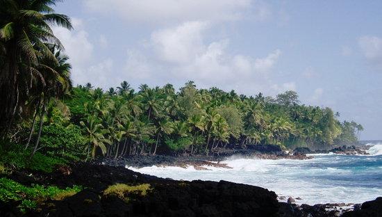 Hilo, HI: Kalapana coast