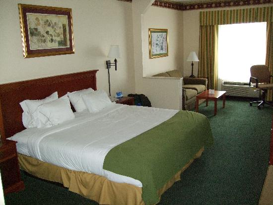 Holiday Inn Express Orlando Airport: Bedroom and sitting area.