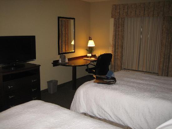 Hampton Inn & Suites Omaha Southwest/La Vista: view of room2