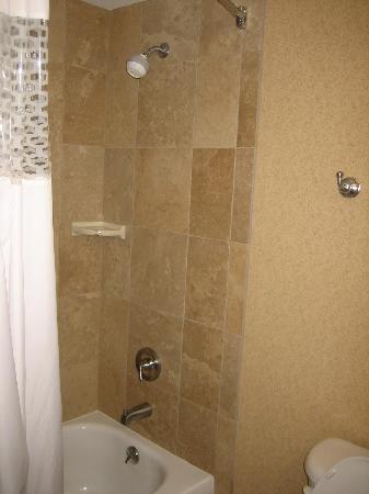 Hampton Inn & Suites Omaha Southwest/La Vista: view of bathroom2