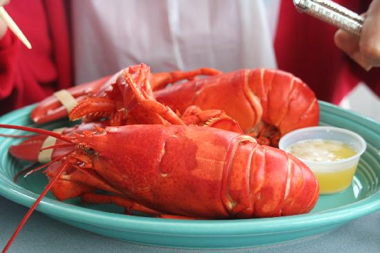 The Beach House: nothing like maine lobster