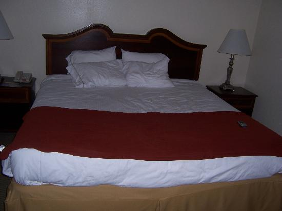 Country Inn & Suites Fayetteville - Ft. Bragg: the really comfortable bed