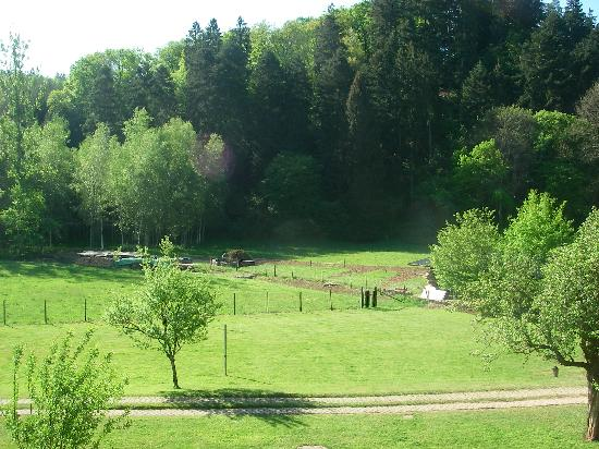 Burg Bruch: The grounds from our bedroom