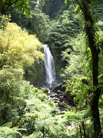 Dominica: Dominique - Caribbean - one of the Trafalgar twin falls