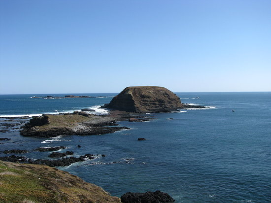 Phillip Island Vacations