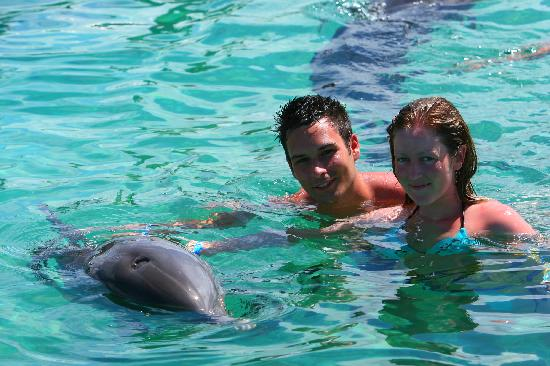 Bavaro Princess All Suites Resort, Spa & Casino: Dolphin Island