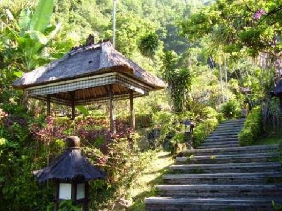 Kubu Bali Hotel: Kubu star