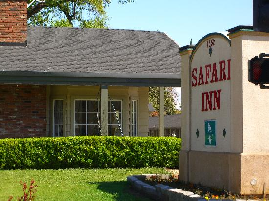 Safari Inn : took this picture this morning right after going to trader joe's for groceries...