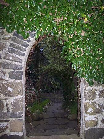 Ballygally, UK: Enchanting walkways